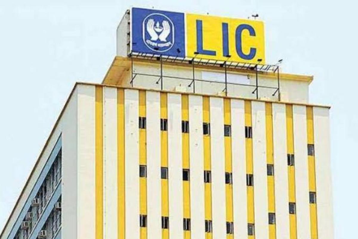 LIC, insurance revival, lapsed policy, COVID-19