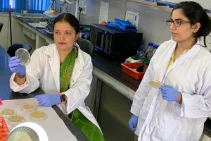 IIT Roorkee researchers find breakthrough for treatment against systemic candidiasis infection