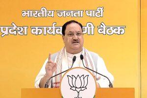 BJP, JD(U) and LJP to fight Bihar Assembly elections together under leadership of Nitish Kumar: JP Nadda