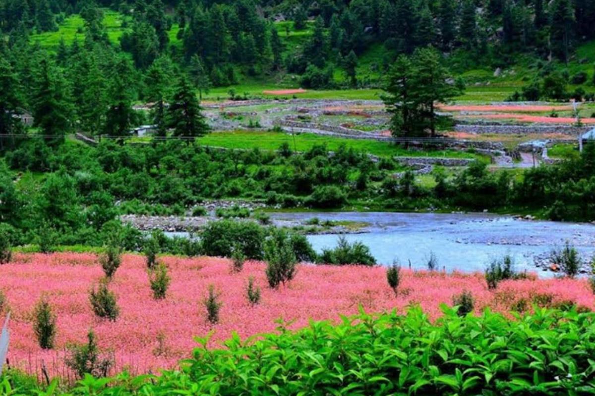Kinnaur, Spiti valley, Lahaul