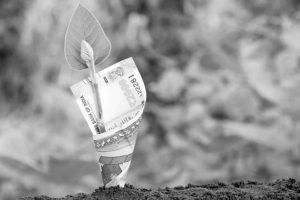 Thinking beyond growth