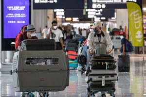 EU's domestic tourism recovers faster than foreign