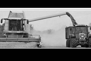 Integrating Farmers