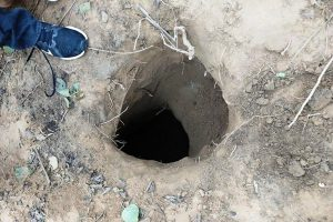 Security forces unearth tunnel along IB suspected to be used by terrorists to sneak in J&K