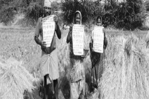 Group seeks free ration scheme extension, universalisation of PDS