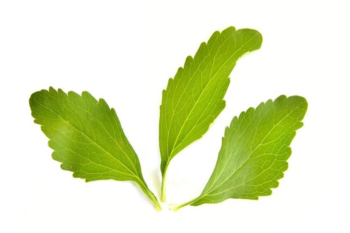 replace, sugar, stevia leaf extract,
