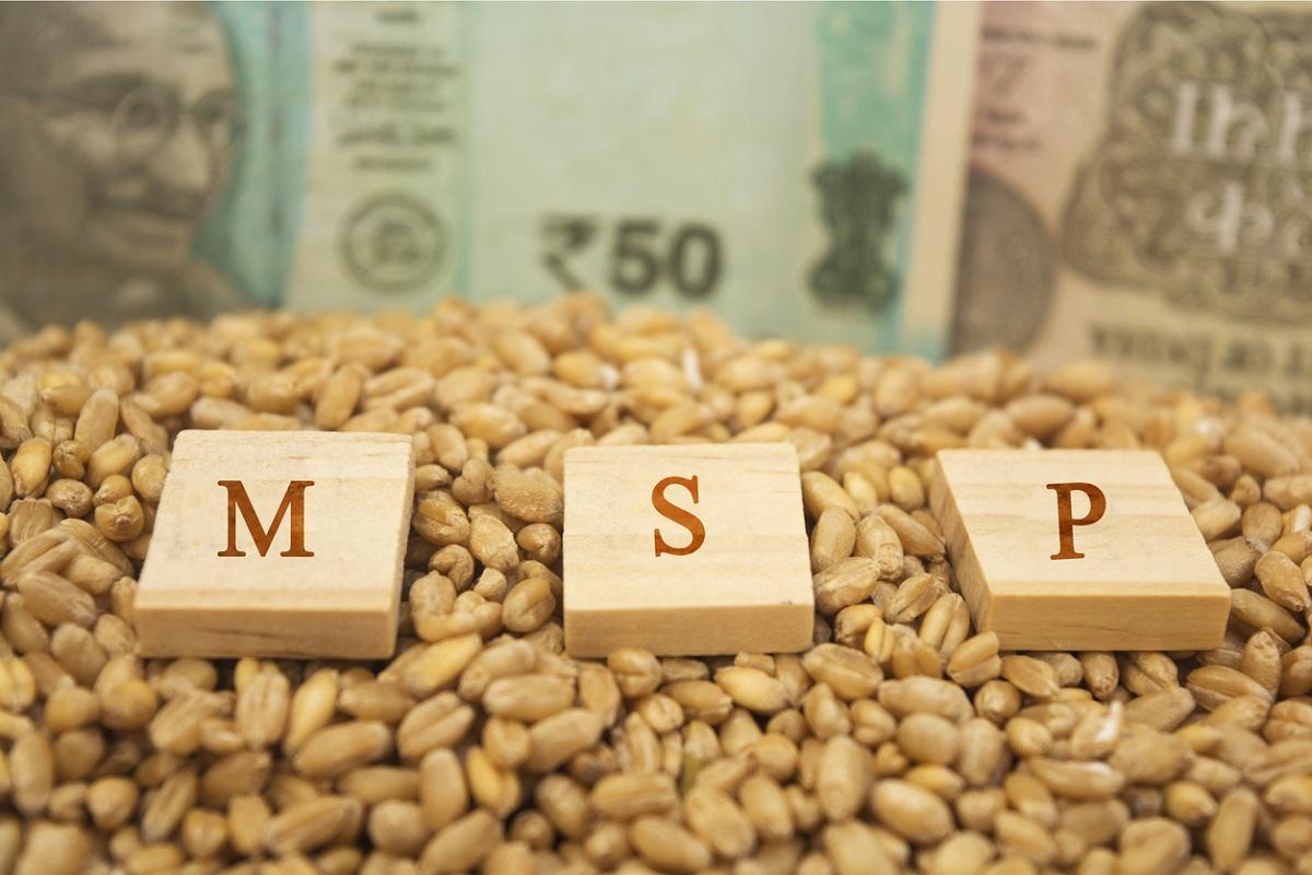 MSP, kharif, Kharif Marketing Season, Punjab, Haryana, Uttar Pradesh