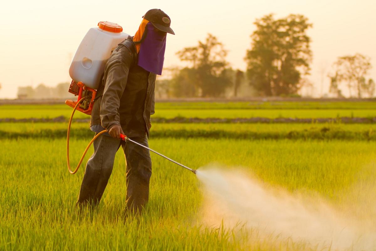 Cancer, healthy food, herbicides, glyphosate