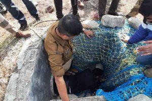 Leopard enters Dehradun airport, rescue operation launched