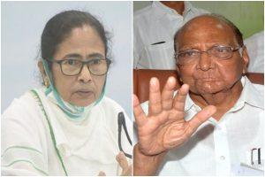 Mamata Banerjee calls NCP chief Sharad Pawar as BJP starts 'surgical strike' in Bengal