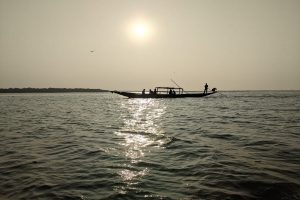 How dolphins are anchoring Chilika lake tourism amid pandemic
