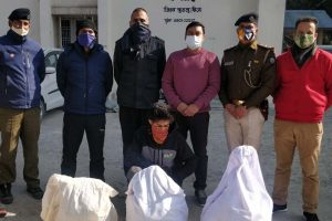 HP cops seize drugs worth Rs 4 crore from interior village in Kullu valley