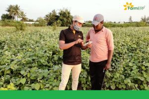 How AgriTech is facilitating stakeholder management for the agricultural industry