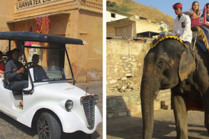 PETA India's EV chariot design to replace elephants at Amer Fort