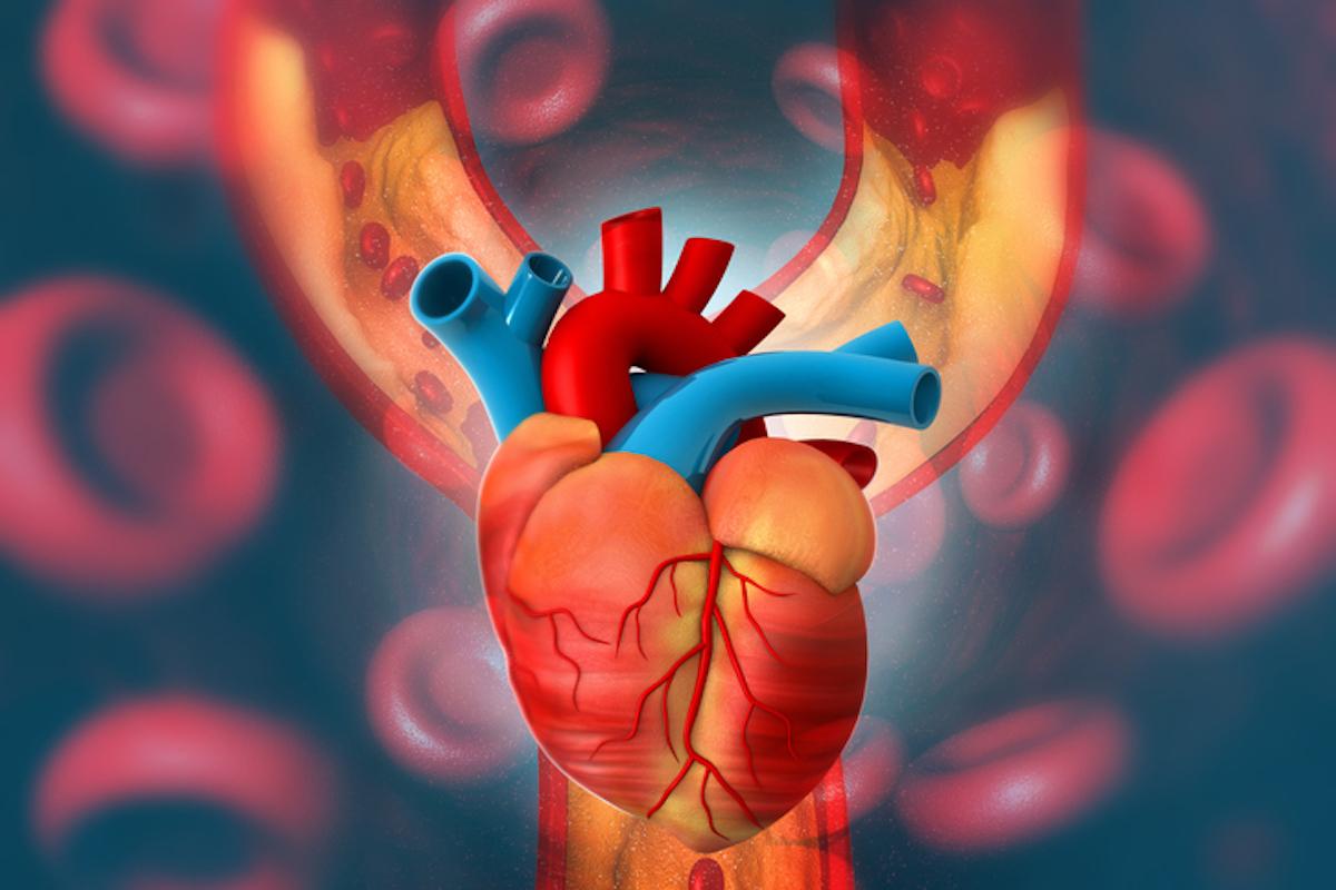 Heart health, Winters, heart patient