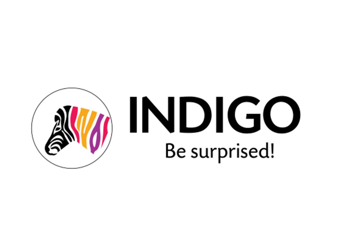 Indigo Paints IPO, Sequoia Capital