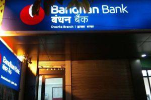 Bandhan Bank, Godrej Consumer among top large cap stocks sold by MFs in Jan