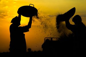 APMCs to get access to Agriculture Infrastructure Fund