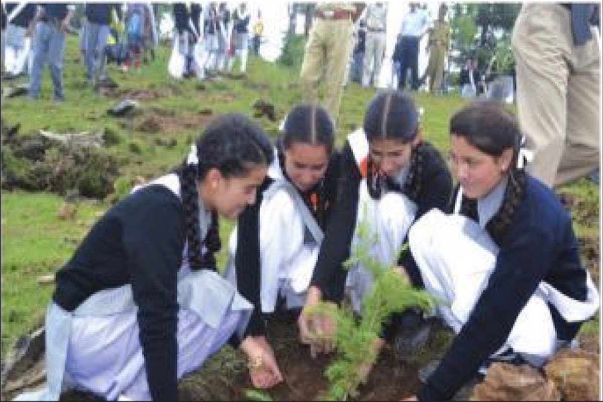 HP students plant 2.53L saplings during 2018-20