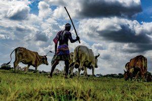 Odisha farmers deprived of PM KISAN: Pradhan
