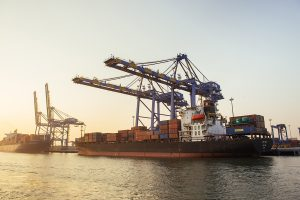 Shipping Corp's December quarter profit drops 55% to Rs 132 crore