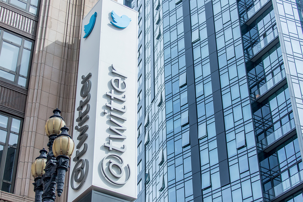Twitter suspends 250 'anti-government' accounts