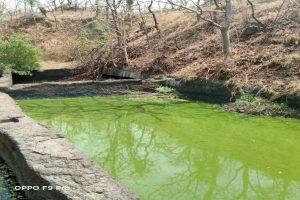 Maha: Sunday picnic unearths centuries-old Satavahana era mystery cave