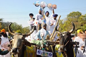 SAD MLAs reach Assembly in bullock carts to demand VAT cut on fuel prices