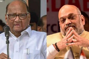 Everything can't be made public: Amit Shah on meeting Sharad Pawar