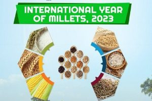UNGA adopts India-led resolution to declare 2023 as International Year of Millets
