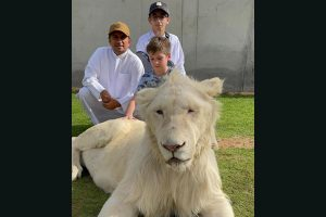 Dubai Lieutenant Colonel Masoud Alhammad has a rich collection of beasts animals in his Zoo