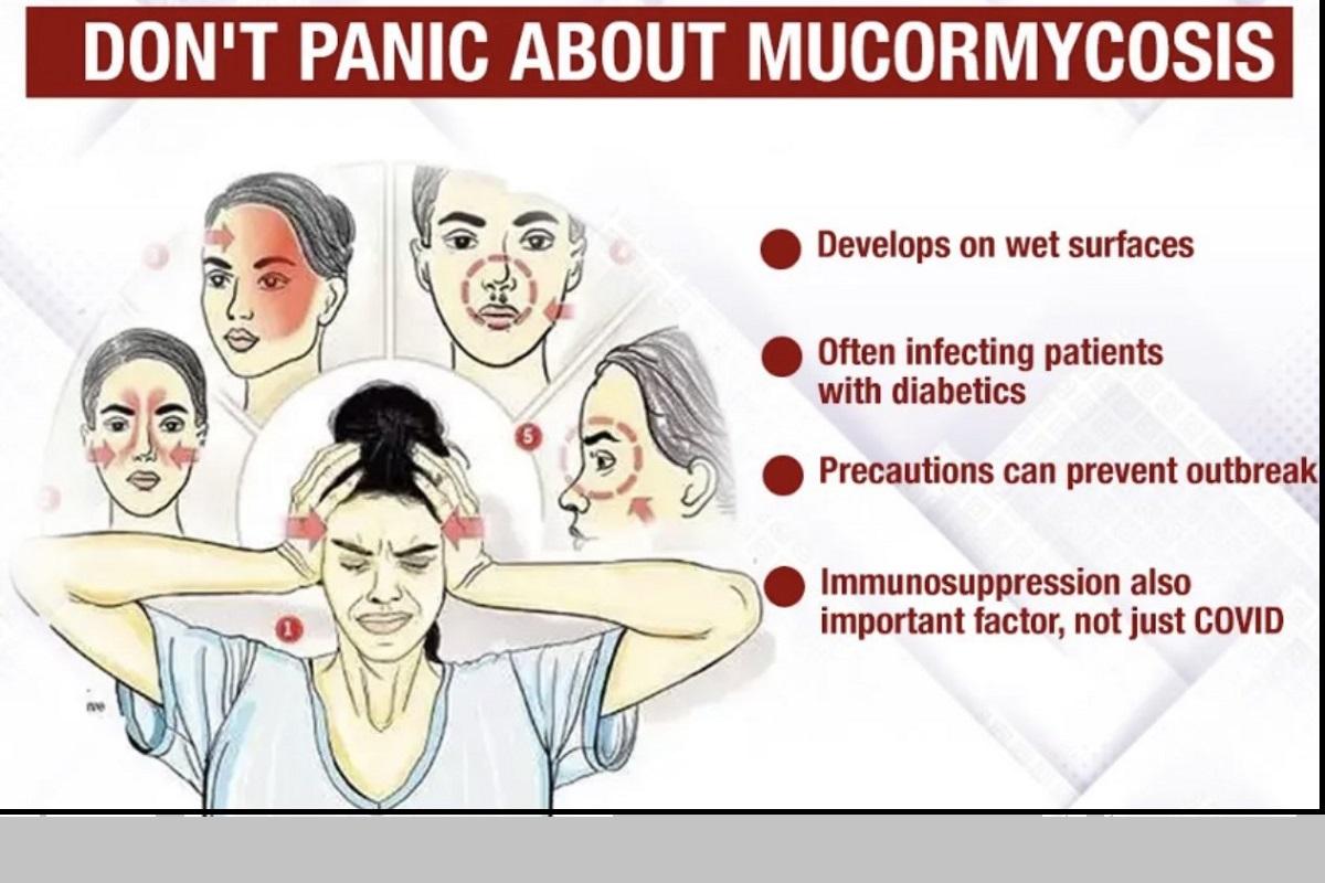Mucormycosis, Amphotericin B, COVID