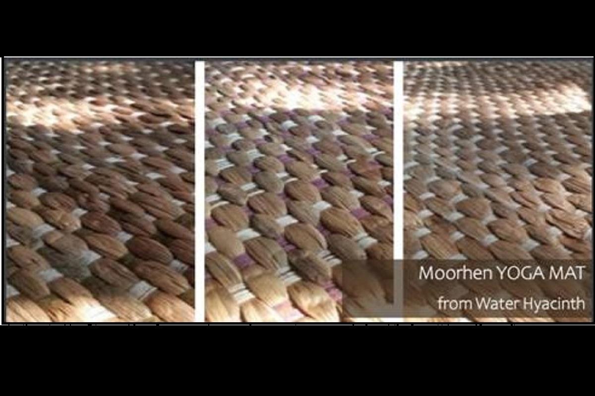 Biodegradable yoga mat, Assam, water hyacinth, Deepor Beel