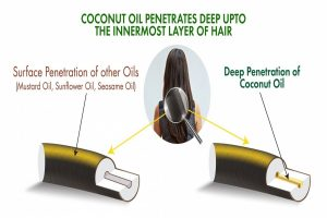 Finally, the Evidence behind Super Ingredient for Hair Care