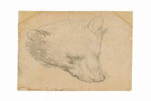 A rare Leonardo da Vinci drawing heads to auction