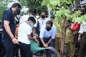 Ajay Devgn on planting trees: I can set example, all including kids should be involved