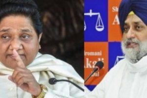 Akali Dal, BSP stitch alliance in Punjab