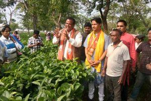 Despite row, Barla sticks to N Bengal UT stance