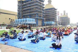 NTPC celebrates International Yoga Day
