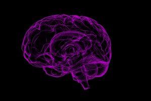 Researchers build first modular quantum brain sensor, record signal