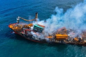 176 turtles, 20 dolphins dead after cargo ship fire in Sri Lanka