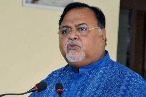 Govt has bagged industry proposals from 25 firms: Partha