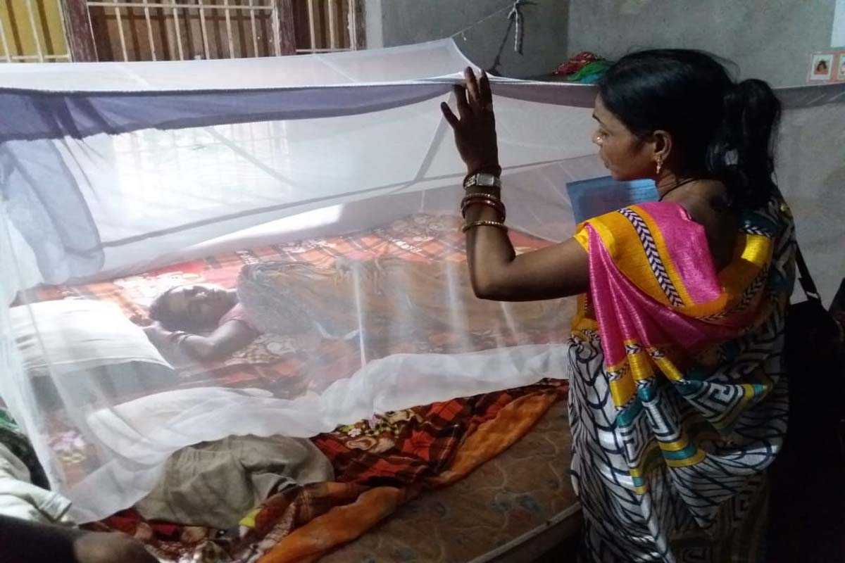 bhubaneswar, dengue