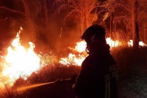 State of emergency declared in Italy's wildfire-hit Sardinia
