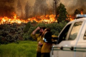 Heat wave blankets US West as wildfires rage in several states