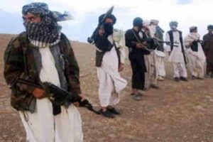 Taliban urges Afghan govt employees to return to work