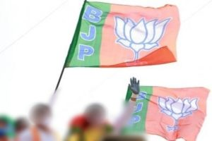 Tamil Nadu BJP gears up for local body polls