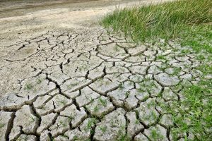 Droughts to increase in India, South Asia: IPCC report
