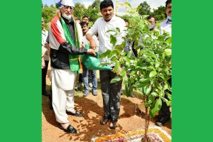 Parched, rocky arid Telangana turns green