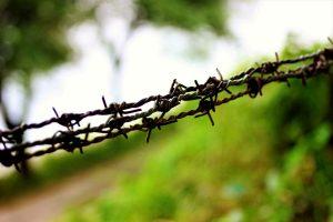Union MoS seeks land for B'desh border fencing